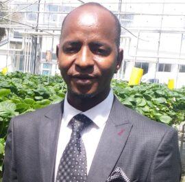 Mamadou Boye DIALLO