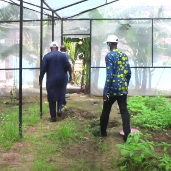 BTS EN AGRICULTURE: ISETA TAMBACOUNDA RÉALISE UN TAUX DE 90% DE RÉUSSITE